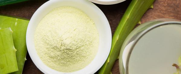 قیمت پودر چاقی آلوورا صادراتی چقدر است؟